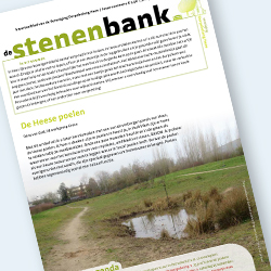 De Stenen Bank 2-2021